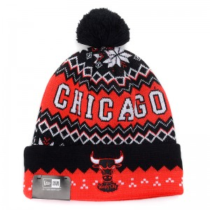 Beanie Chicago Bulls