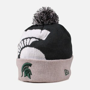 Michigan State Beanie Pictures